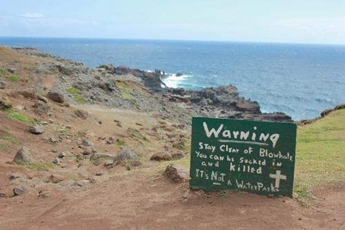 茂宜島天然心型石