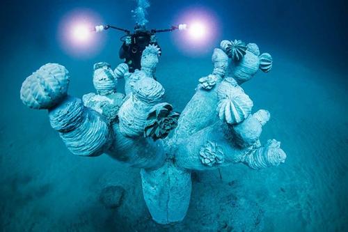 歐洲首間海底博物館Museo Atlantico