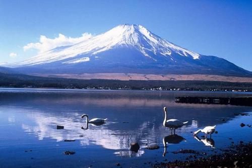 必逛五大日本中部城市推薦