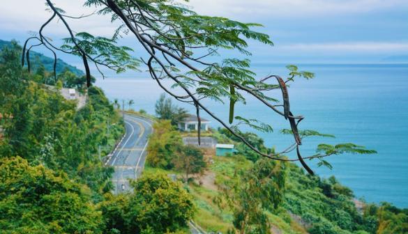 【越南 峴港】茶山半島 體驗自然森林地帶