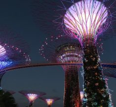 新加坡自由行懶人包!機票資訊、人氣美食、周邊景點、天氣穿衣全攻略
