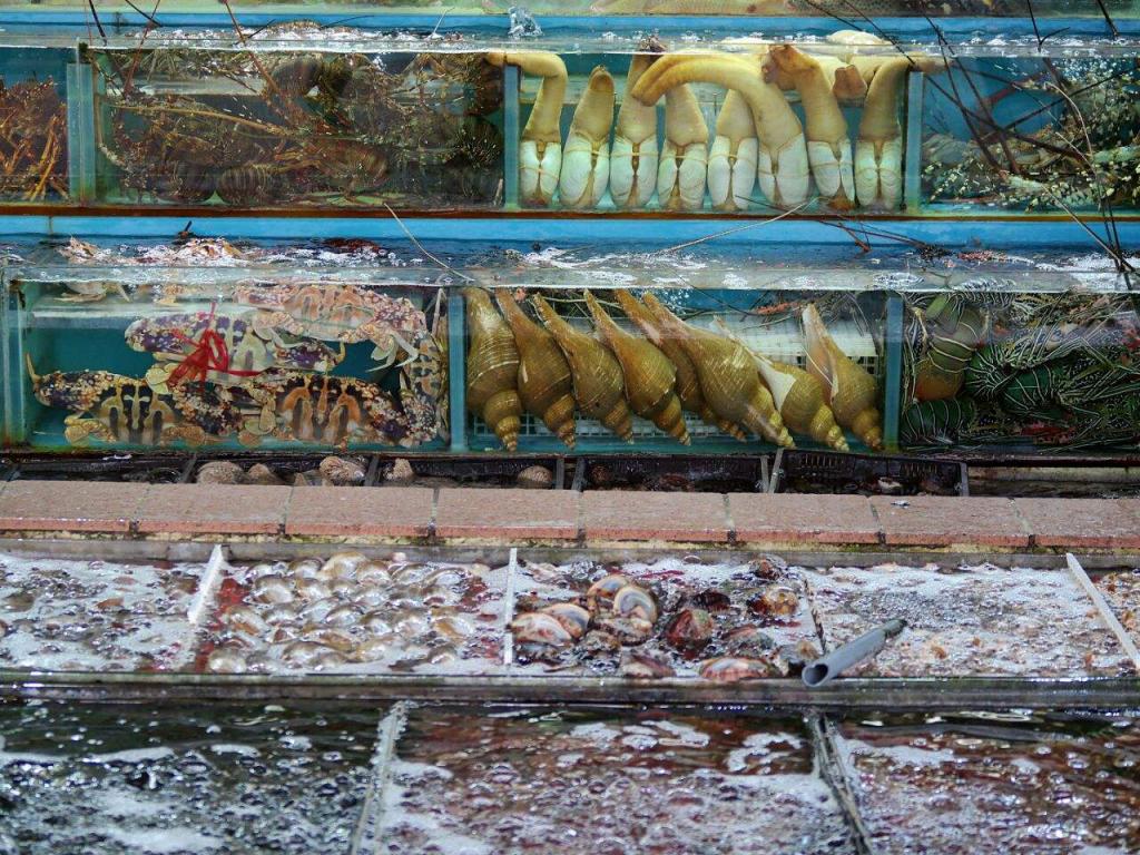 西貢潛水 海鮮街