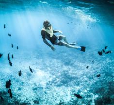 【潛水課程推薦】潛水新手應如何選擇合適的課程、費用、比較