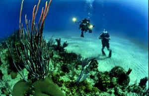 潛水小知識