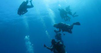 PADI潛水 開放水域潛水員