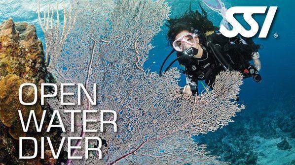SSI潛水 開放水域課程