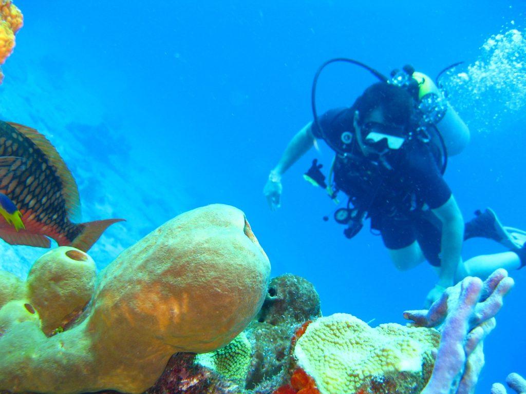 峇里潛水 圖蘭奔