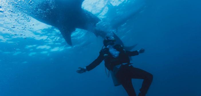 潛水攝影濾鏡