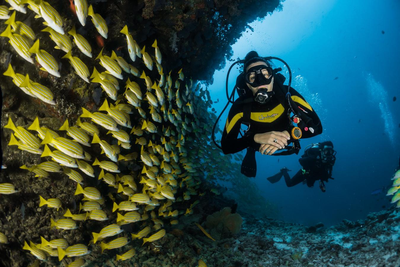 潛水訓練 潛水課程
