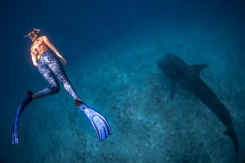 潛水訓練 自由潛水