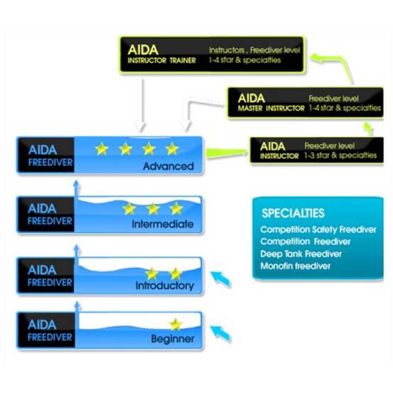 自由潛水 AIDA潛水課程