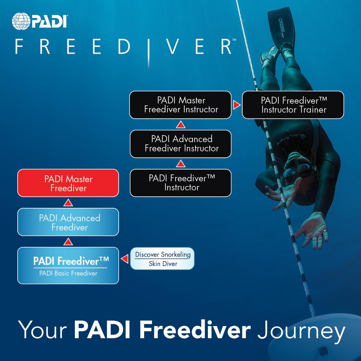 自由潛水 PADI潛水課程
