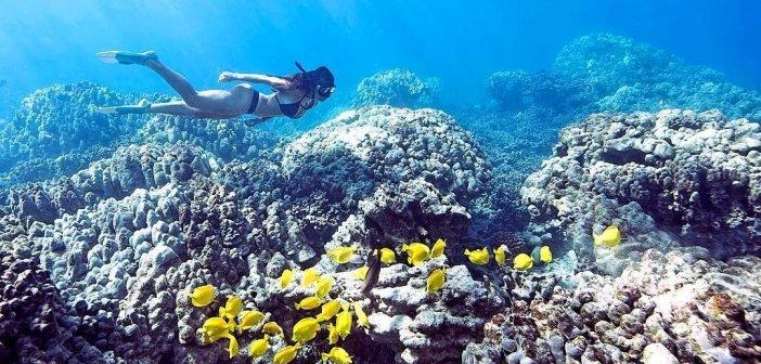 自由潛水勝地