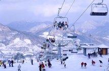 滑雪 課程