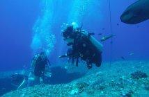 北海岸潛水