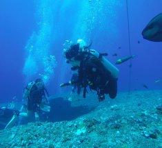 北海岸潛水|潛水新手、中階潛水者的好去處