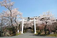 日本行山|2021最新五大行山路線推薦,影相打卡一流!
